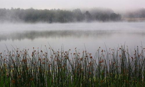 ŁOTWA / wschodnia część... / gdzieś w lesie, nad jeziorem... / W drodze do Rosji.....