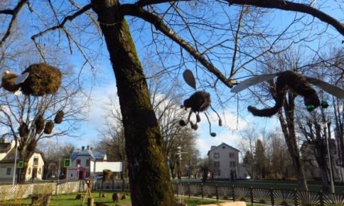 Zdjęcie ŁOTWA / okolice Rygi / Sigulda / obrazki z Siguldy