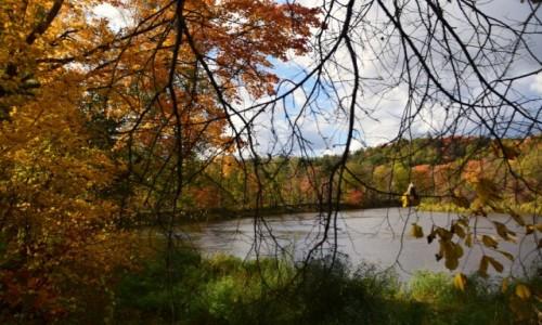 Zdjecie ŁOTWA / Okręg Sigulda / Park Narodowy Gauja / Jesień, woda i las