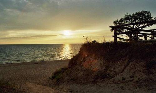Zdjęcie ŁOTWA / Zatoka Ryska / Tuja / zachód słońca