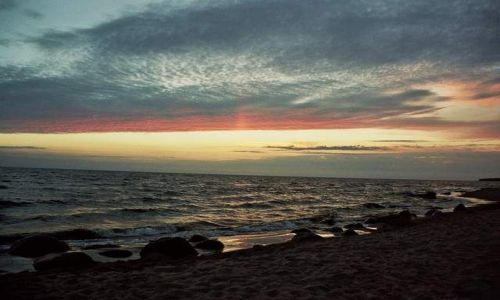 Zdjecie ŁOTWA / Zatoka Ryska / Tuja / zachód słońca nad zatoką