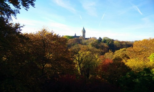 Zdjecie LUKSEMBURG / - / Luksemburg / Jesień w Luksemburgu
