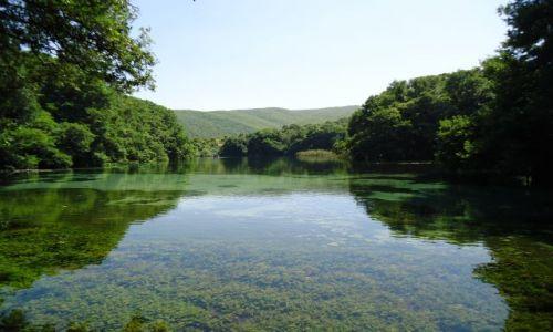 Zdjęcie MACEDONIA / Ochryda / Sveti Naum / Jezioro