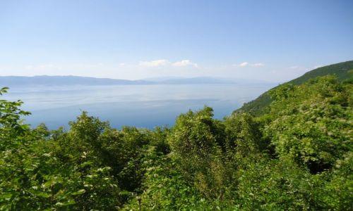 Zdjęcie MACEDONIA / Ochryda / okolice Sveti Naum / Na koniec Macedonii