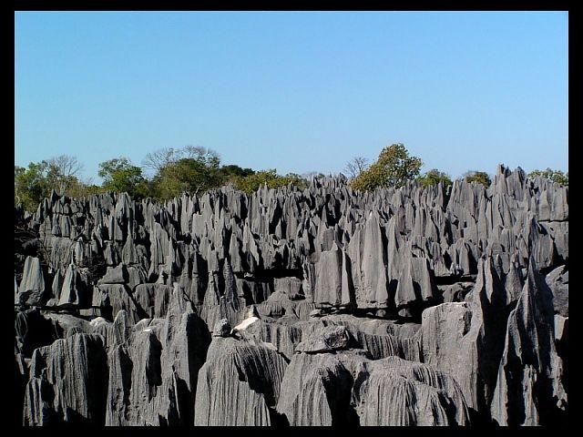 Zdjęcia: Tsingy of Bemaraha National Park, Mahajanga, Tsingy2, MADAGASKAR