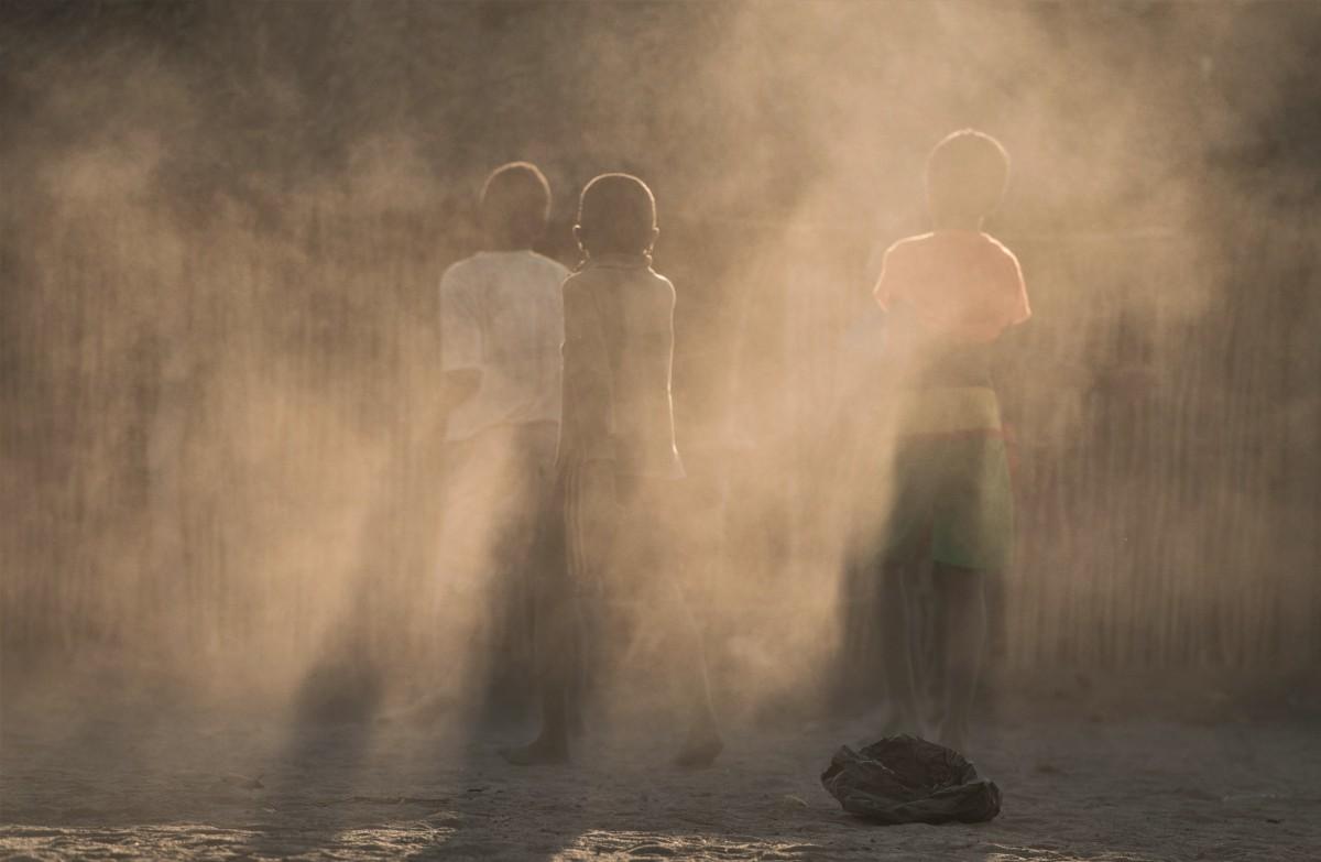 Zdjęcia: Avenue des Baobabs, Zachodni, Fantom ... asy ;-), MADAGASKAR