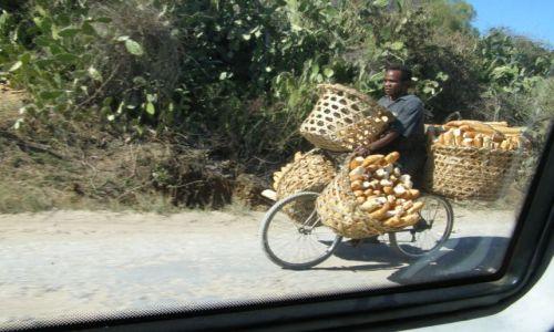 Zdj�cie MADAGASKAR / - / Antananarivo / Czerwona wyspa