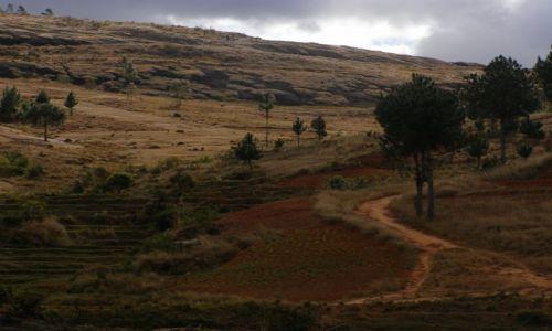 MADAGASKAR / Antananarivo / 25 km od stolicy / LEMURY - Widok na park (2)
