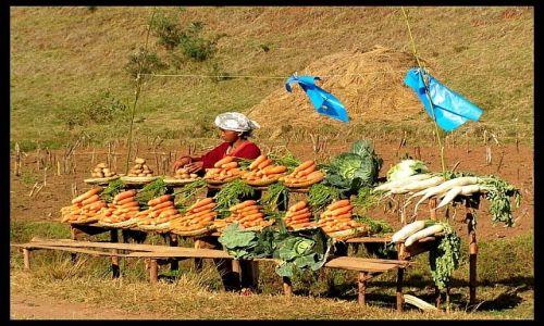 Zdjęcie MADAGASKAR / Antananarivo / okolice Antsirabe / Stragan