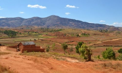 MADAGASKAR / Prowincja Antananarywa / okolice Antananarywa  / Przedmie�cia Antananarywa