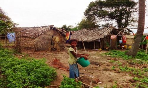 Zdjęcie MADAGASKAR / Północno-Zachodni Madagaskar / Prowincja Mahajanga  / Pracownik w polu......