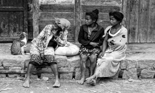 Zdjecie MADAGASKAR / Fianarantsoa-Manakara / gdzieś na trasie pociągu / Kociak