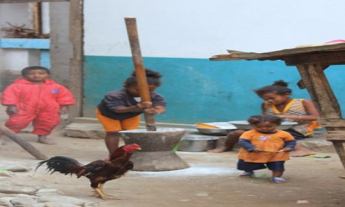 Zdjecie MADAGASKAR / Ranomafana / Ranomafana / Będzie obiad