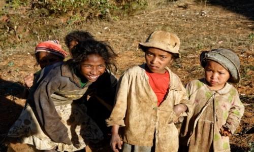 Zdjęcie MADAGASKAR / Antsirabe / okolice Antsirabe / Mała