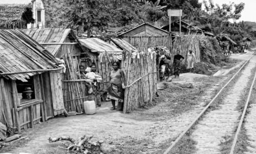 Zdjęcie MADAGASKAR / Fianarantsoa-Manakara / gdzieś na trasie pociągu / Przy torach