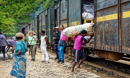 Zdjecie MADAGASKAR / Fianarantsoa-Manakara / gdzieś na trasie pociągu / Załadunek