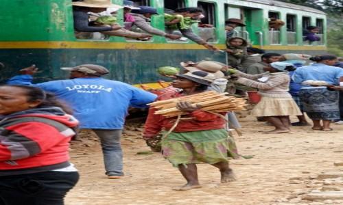 Zdjecie MADAGASKAR / Fianarantsoa-Manakara / gdzieś na trasie pociągu /