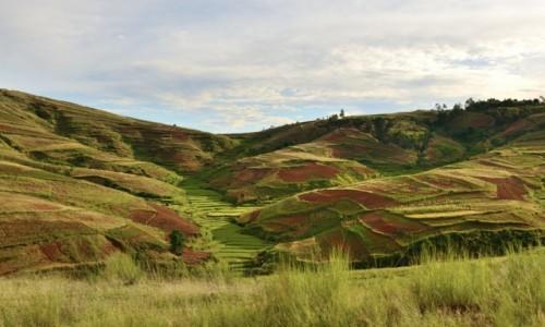 Zdjecie MADAGASKAR / Vakinankaratra / okolice miasta Mandoto / Czerwona ziemia i pola ryzowe