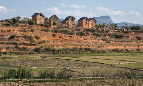 Zdjecie MADAGASKAR / Fianarantsoa / z pociągu / czerwona wyspa...