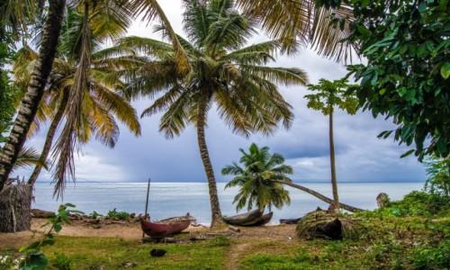 MADAGASKAR / Ste Marie / Ambodifotora / Na brzegu