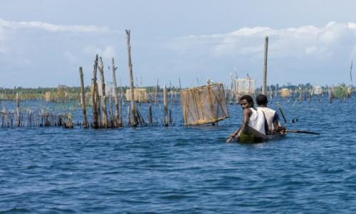 Zdjęcie MADAGASKAR / Madagaskar wschodni / Canal des Pangalanes / Na wodzie