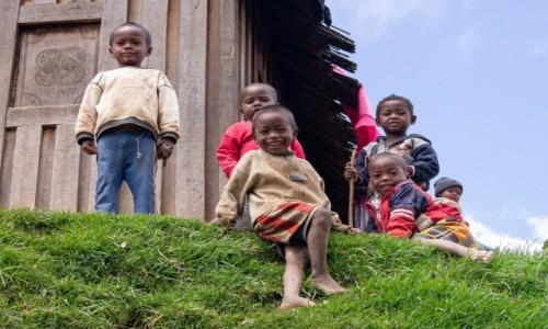 Zdjęcie MADAGASKAR / Madagaskar centralny / Antoetra / Konkurs na największe smarki Afryki
