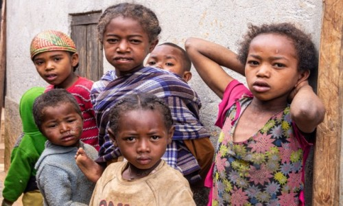 Zdjecie MADAGASKAR / Madagaskar centralny / Antoetra / Do konkursu na smarki Afryki