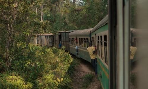 MADAGASKAR / Wschodni / Na trasie pociągu Fianarantsoa - Manakara / Jedzie pociąg z daleka ... ;-)