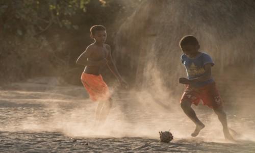 Zdjecie MADAGASKAR / Zachodni / Avenue des Baobabs / Haratać w gałę 😁