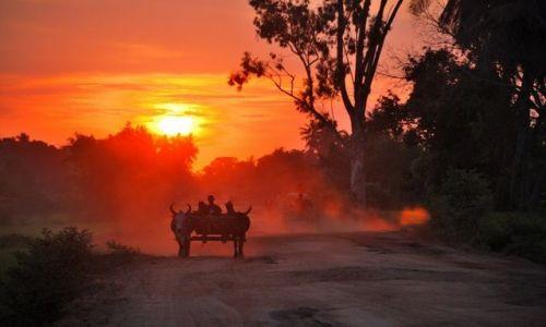 Zdjecie MADAGASKAR / - / okolice Morondawy / Nietypowy zachód słońca