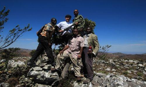 Zdjecie MALAWI / Mafinga Hills / Nafinga Hills / Mafinga Hills