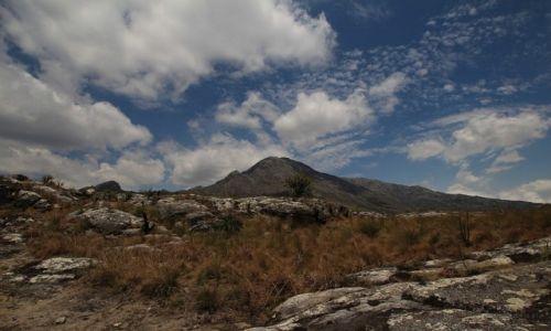 Zdjęcie MALAWI / Mulanje Mountains / Mulanje Mountains / Mulanje Mountains