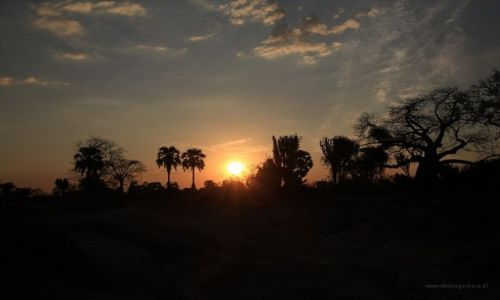 Zdjęcie MALAWI / Malawi / Malawi / Zachód w Liwonde NP