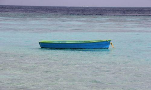 Zdjęcie MALEDIWY / Atol Ari / Omadhoo / Podróż na własna rekę