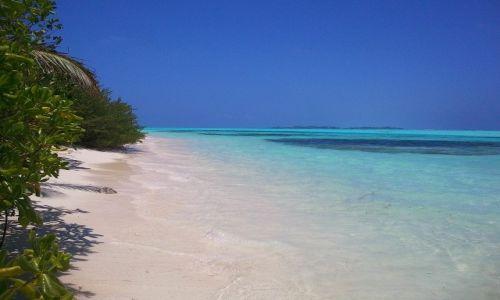 Zdj�cie MALEDIWY / ocean indyjski / picnic island / Rajskie Malediwy