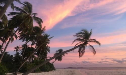 Zdjęcie MALEDIWY / - / Hilmandhoo / Zachód słońca