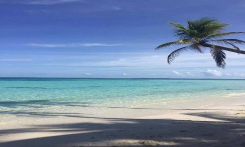 Zdjecie MALEDIWY / Origami Inn / Hilhamndhoo / Rajska plaża:)