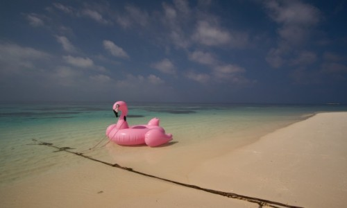 Zdjęcie MALEDIWY / hilmandhoo / Origami Inn / potrzebujesz urlopu?