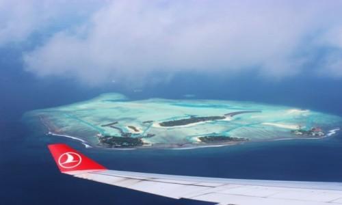 Zdjecie MALEDIWY / Malediwy / Malediwy / Malediwy