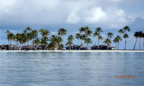 Zdjęcie MALEDIWY / Atol Kaafu / Paradise Island / Wyspa na atolu