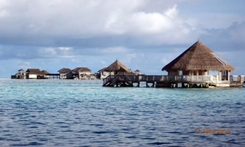 Zdjęcie MALEDIWY / Atol Kaafu / Paradise Island / Domki na atolu