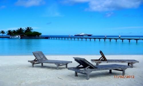 Zdjęcie MALEDIWY / Atol Kaafu / Paradise Island / Na wczasach