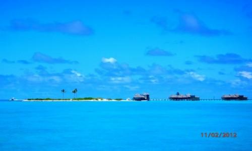 Zdjęcie MALEDIWY / Atol Kaafu / Paradise Island / Błękit