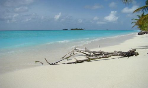 Zdjęcie MALEDIWY / Ari Atoll / Sun Island   / Sun Island
