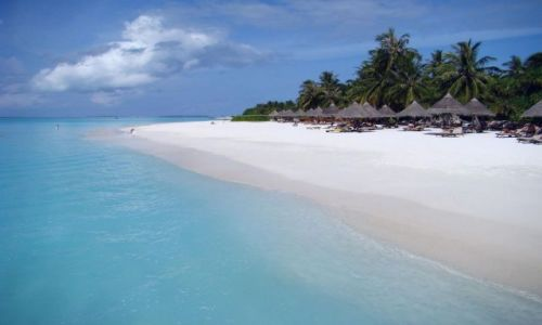 Zdjęcie MALEDIWY / Ari Atoll / Sun Island / Malediwy 7