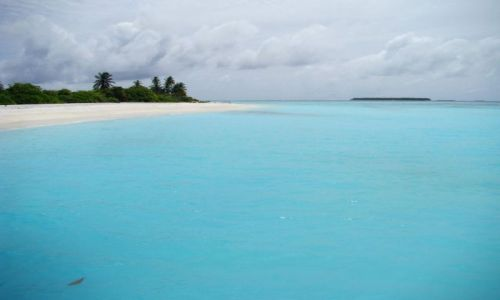 Zdjecie MALEDIWY / Ari Atoll / Sun Island / Malediwy 8