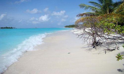 Zdjęcie MALEDIWY / Ari Atoll / Sun Island / Malediwy 11