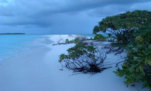 Zdjecie MALEDIWY / Ari Atoll / Sun Island / Malediwy 12