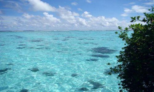 Zdjęcie MALEDIWY / Ari Atoll / Sun Island / Malediwy 15