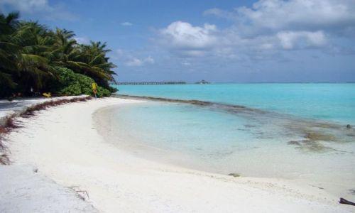 Zdjęcie MALEDIWY / Ari Atoll / Sun Island / Malediwy 16
